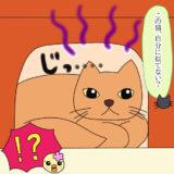 HSP彼氏のクロにゃんに似ている猫