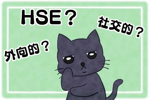 外向的社交的HSEがよくわからないクロにゃん